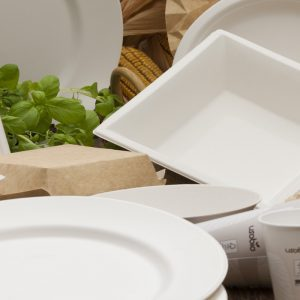 Packs vaisselles jetables pour anniversaire et barbecue