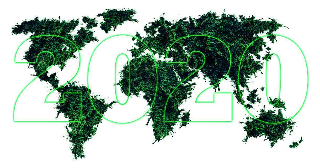 biodégradables