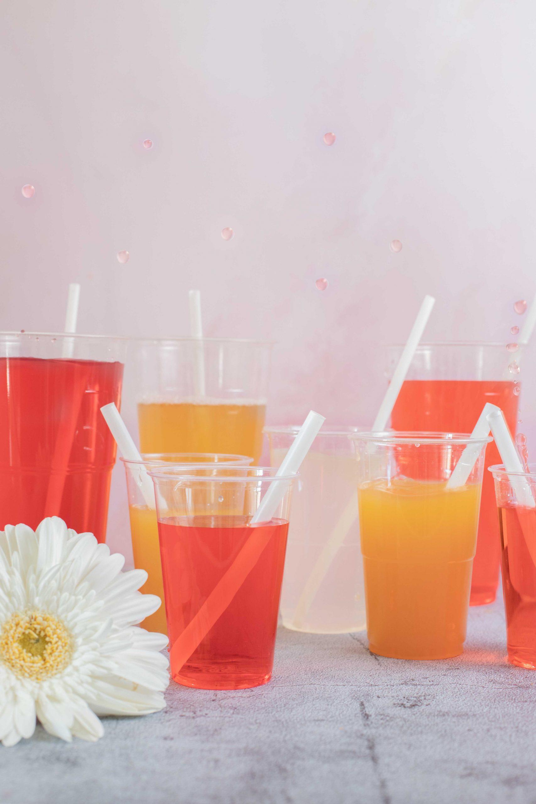 verres jetables ecologique